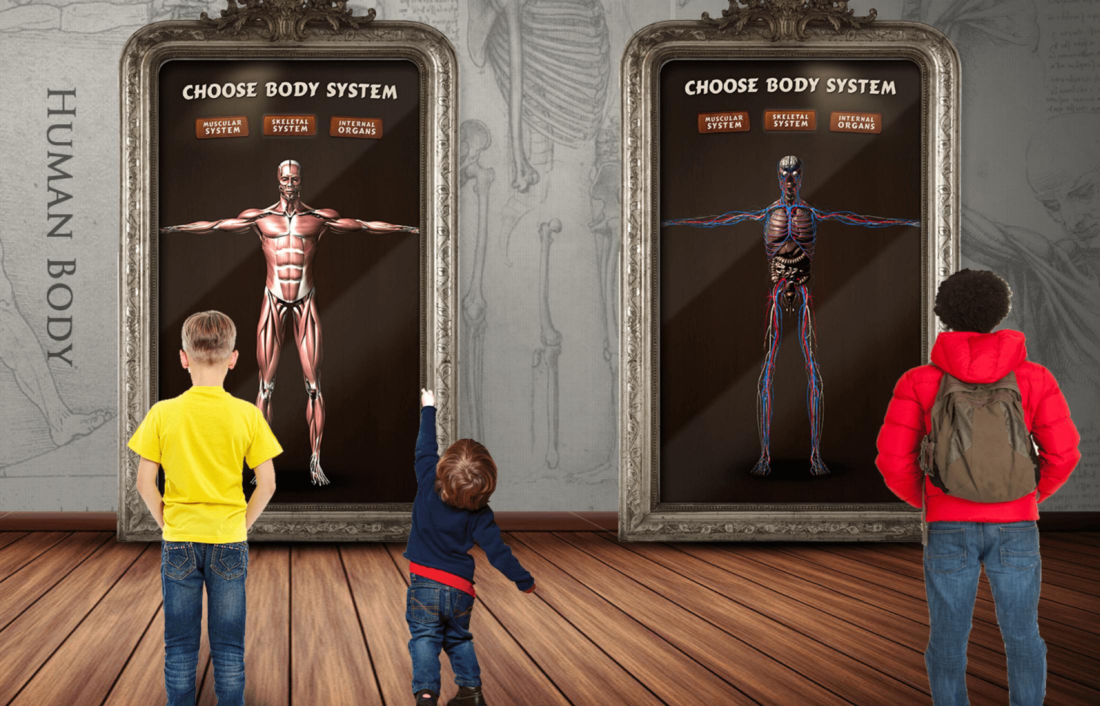Smithsonian: Human Body Interactive