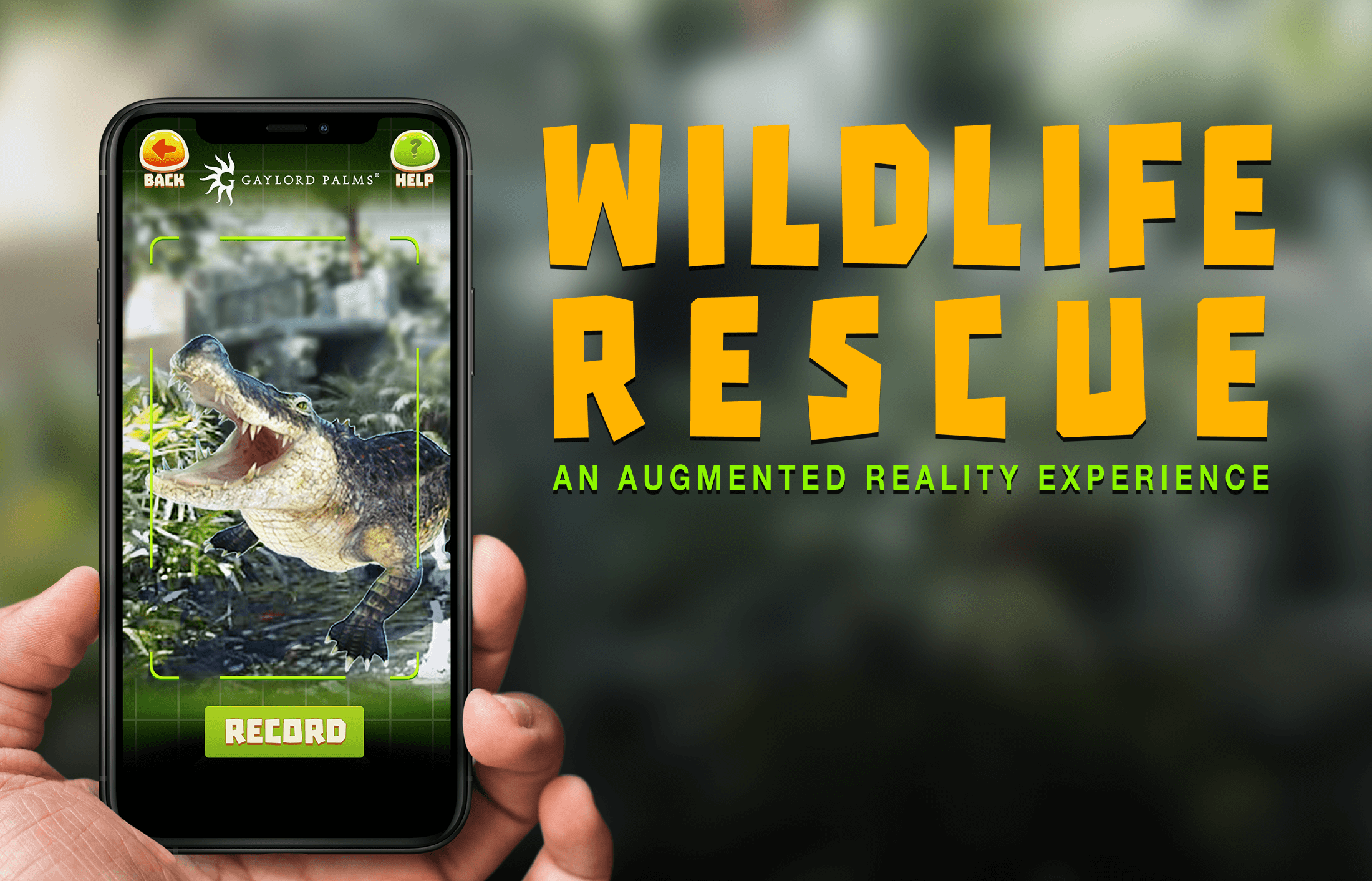 Gaylord Hotels: Wildlife Rescue